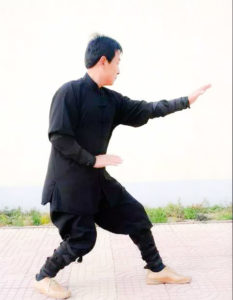 Read more about the article The importance of San Ti Shi in Xingyi Quan | 万法源于三体式