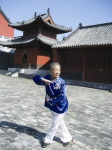 Read more about the article Wudang Taiyi Wuxing Quan   武当太乙五行拳